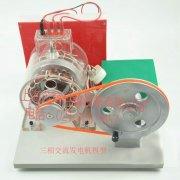 三相交流发电机模