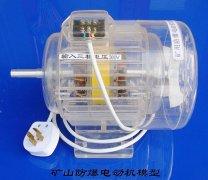 矿用防爆电动机模