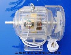 三相鼠笼式电动机